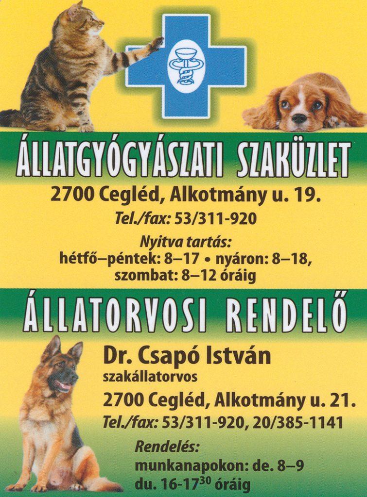 Cegléd Állatgyógyászat